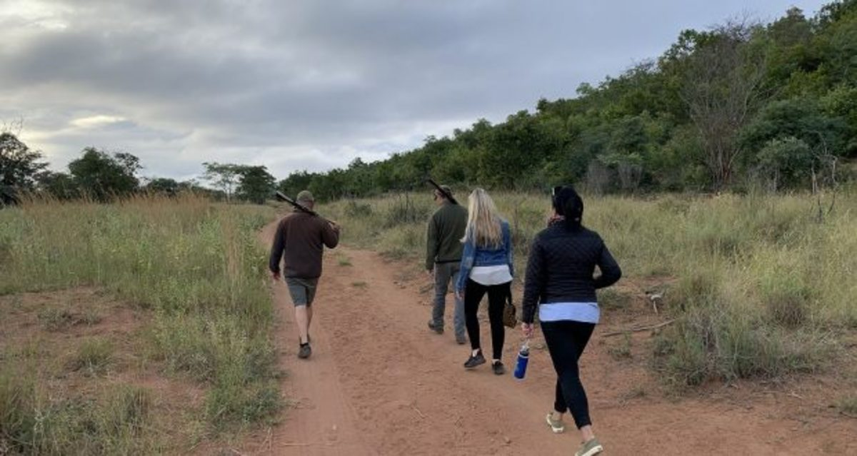 the-kruger-national-park-south-africa-and-how-to-get-the-most-out-of-your-safari-trip