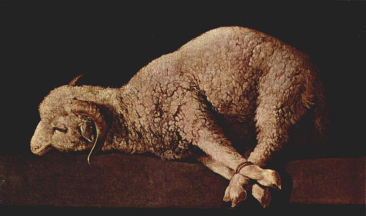 As a Lamb Led to the Slaughter: So He Suffered and Died for You!