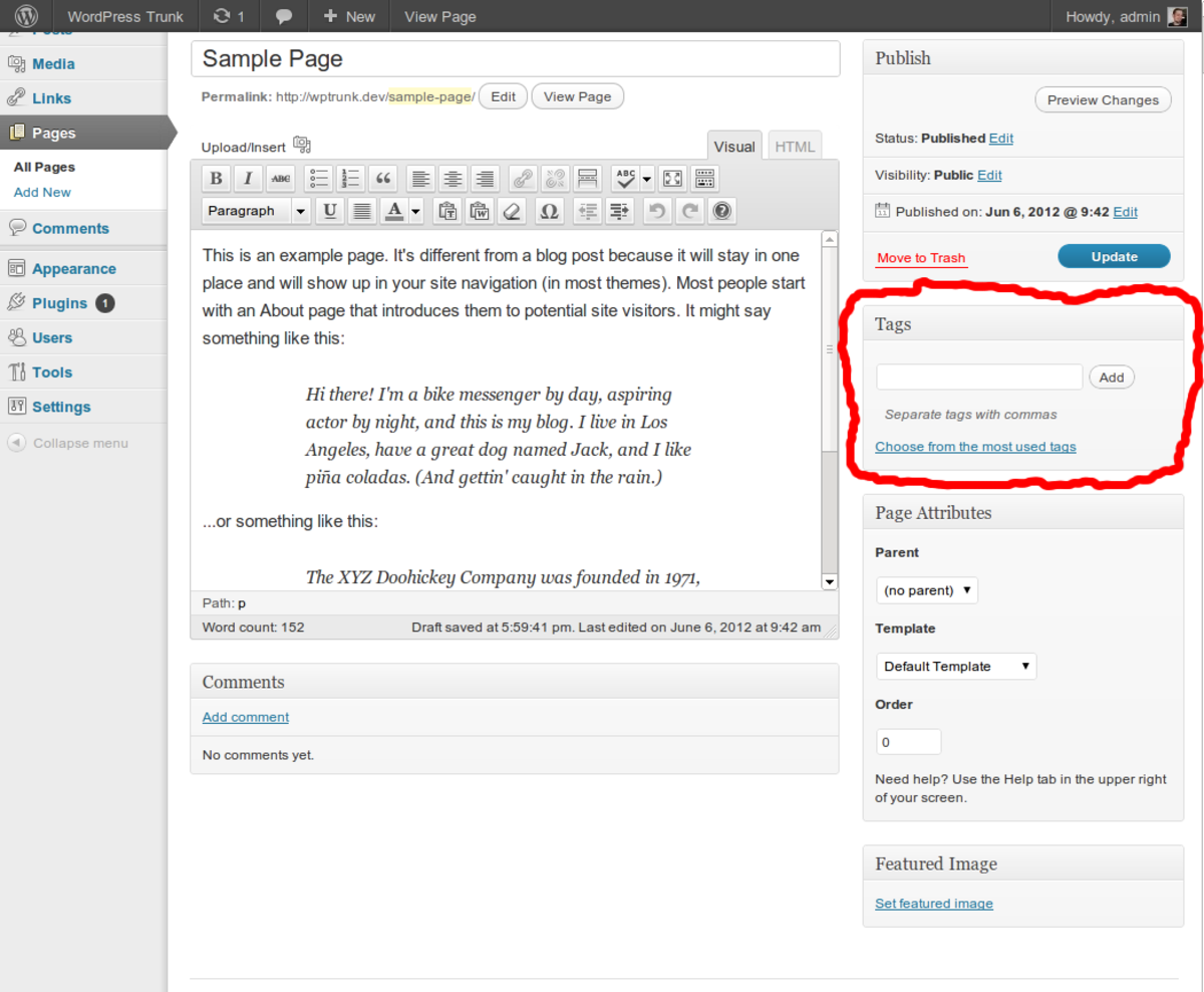 This is a WordPress example. The highlighted section shows the option to insert the relevant tags.