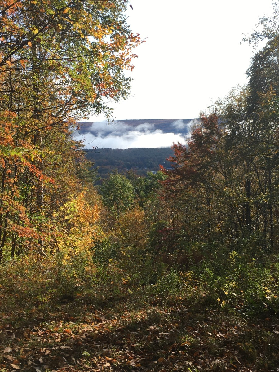 a-great-getaway-trip-to-vermont