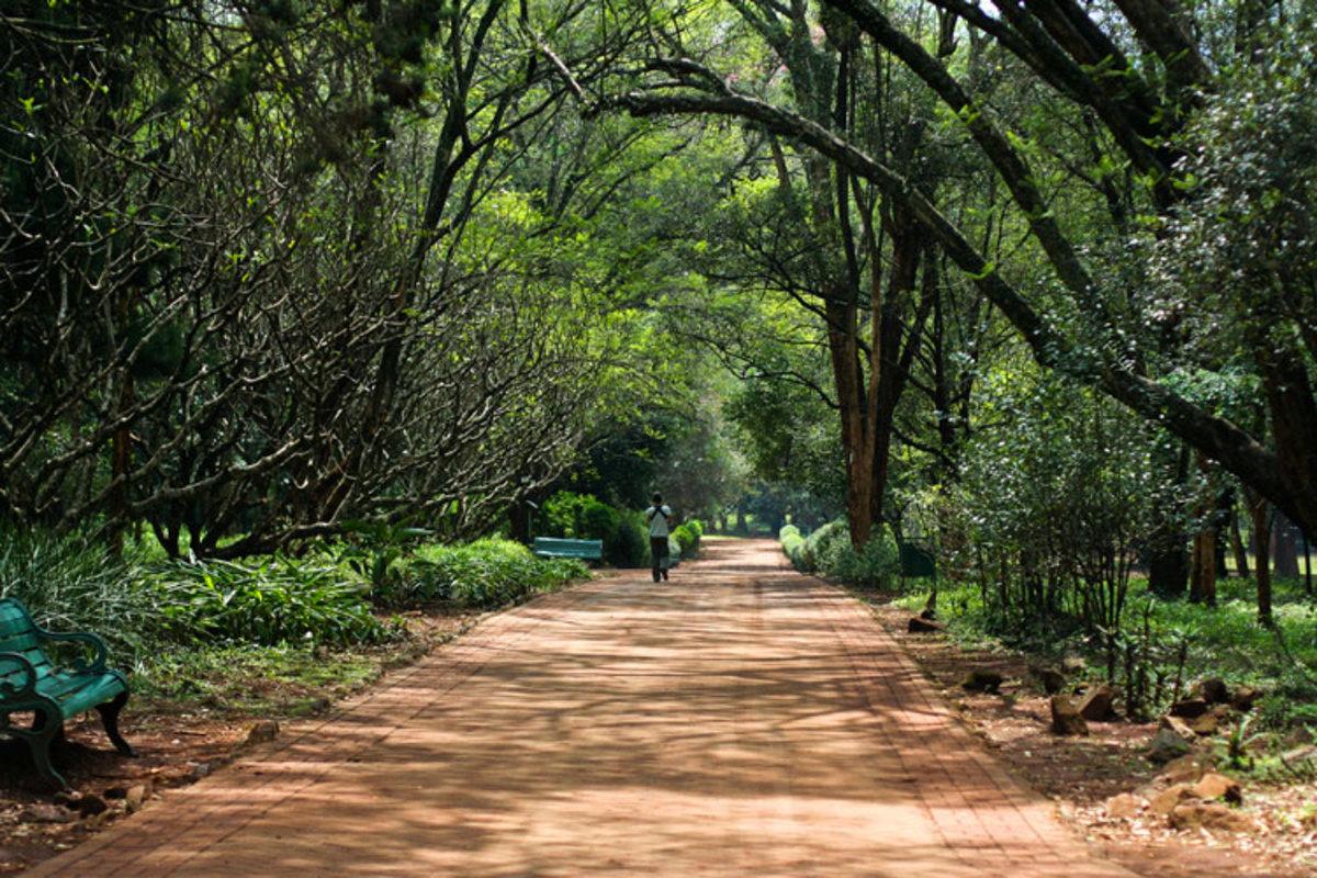 best-tourist-attractions-in-kenya