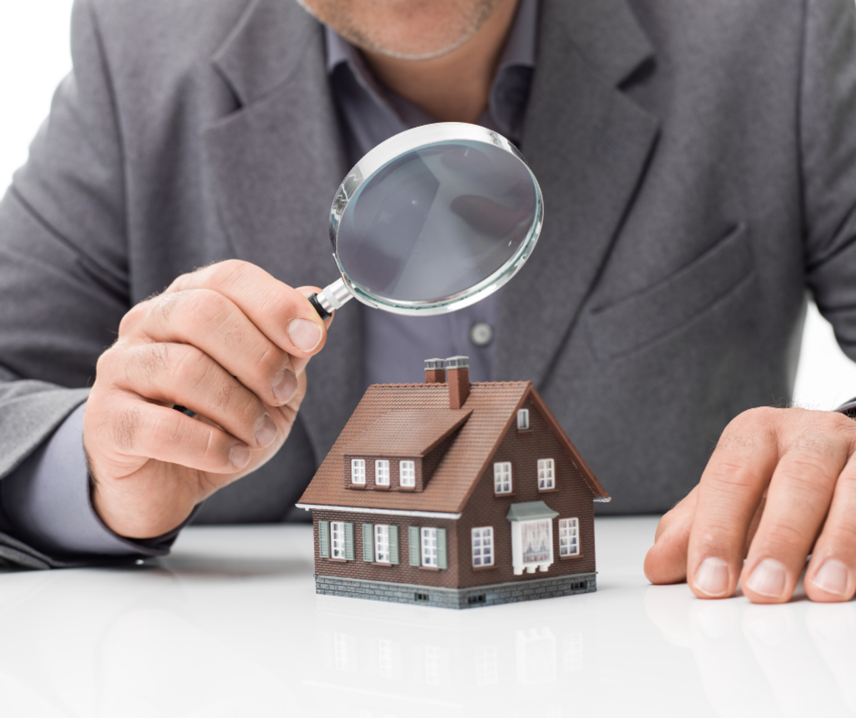 Building and Pest Inspection: 7 Expert Reasons to Get One When You Buy a Home