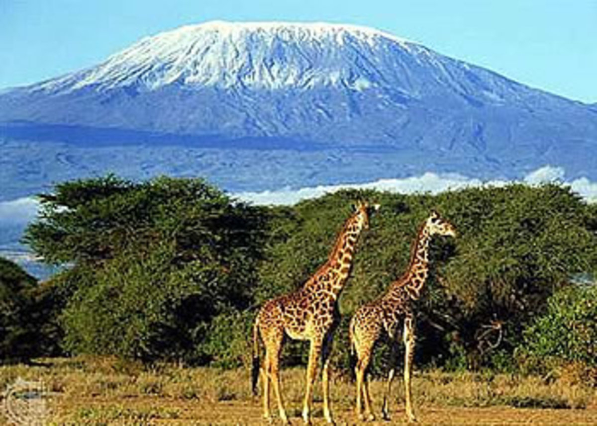 The foot of Mount Kilimanjaro in Kenya