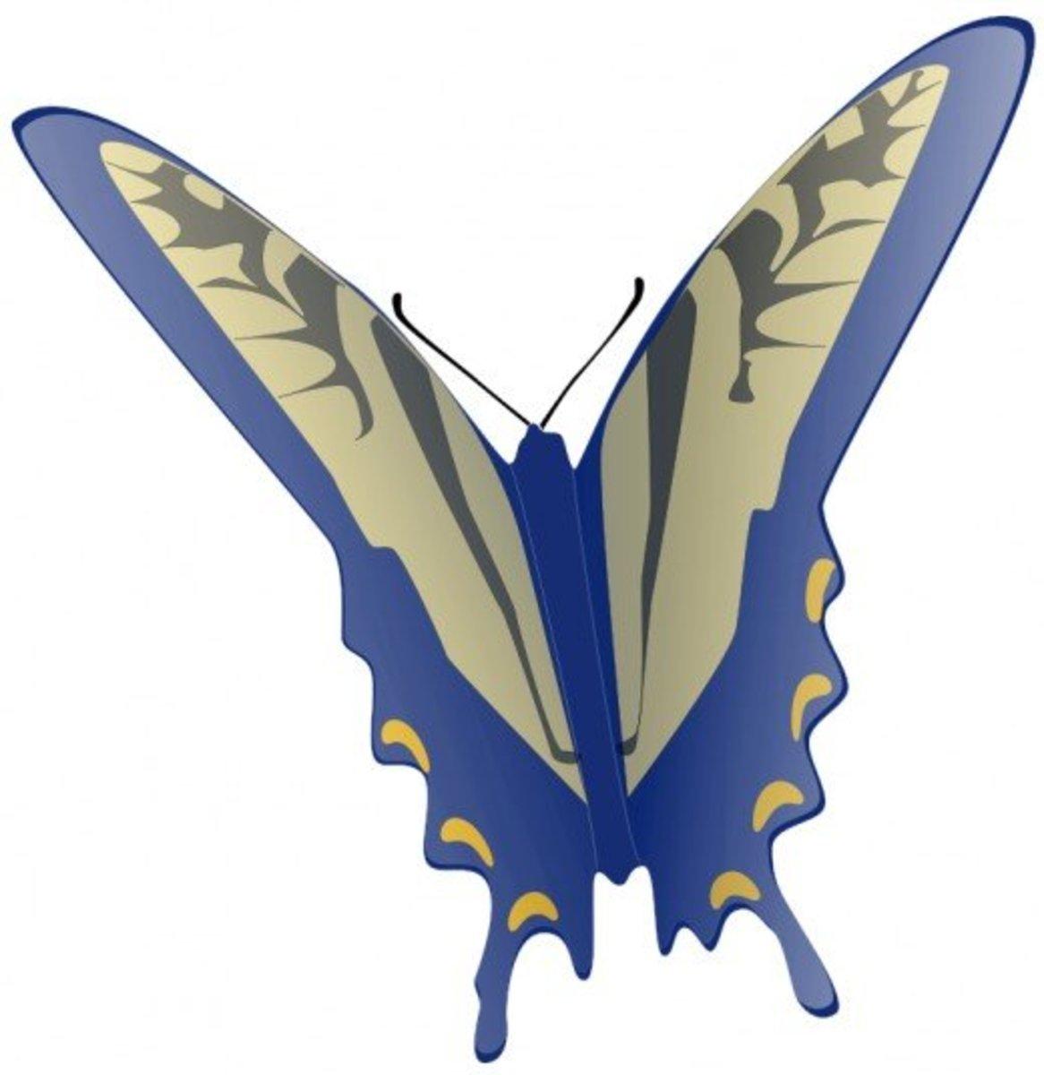 Flying Blue Butterfly