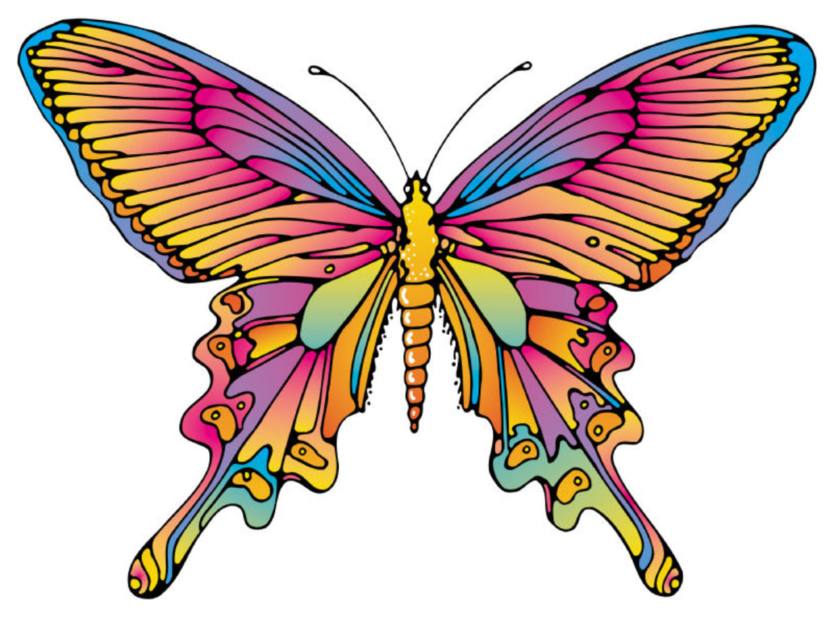 Stained Glass Window Butterfly
