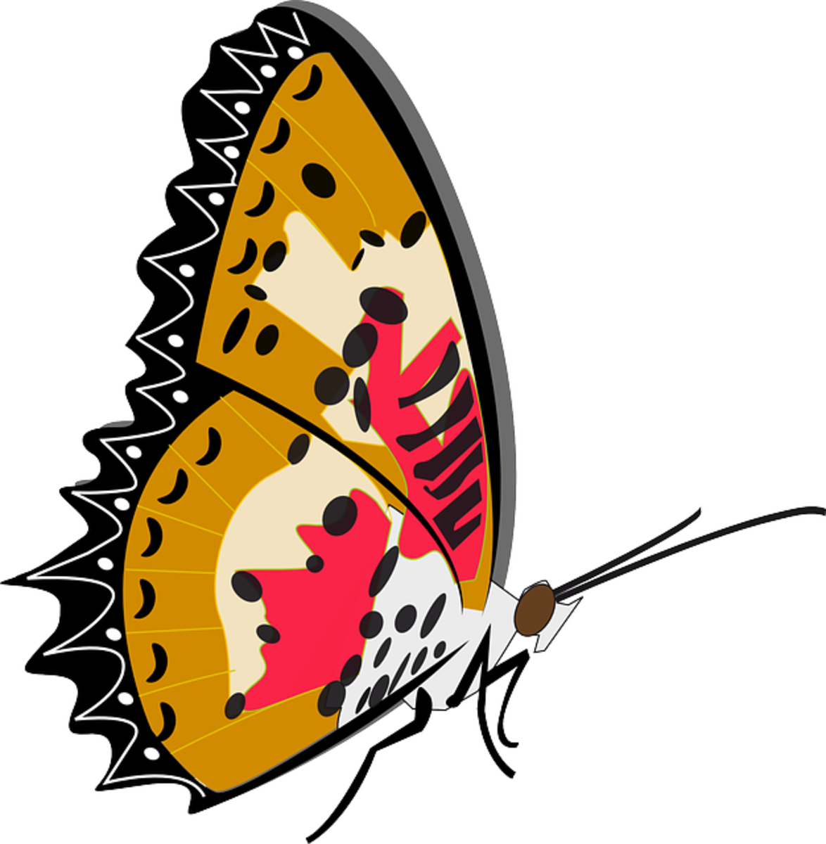 Clip Art of Sideways Butterfly