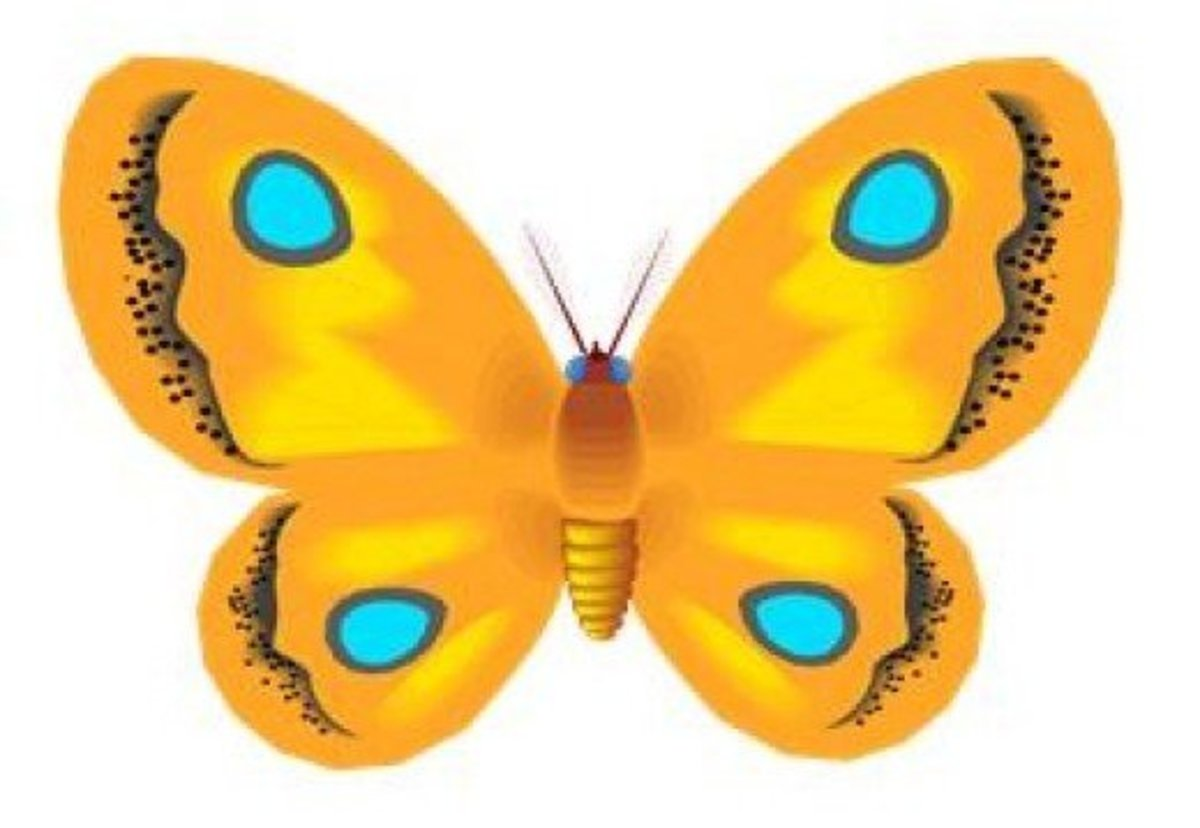 Orange Butterfly with Blue Dots