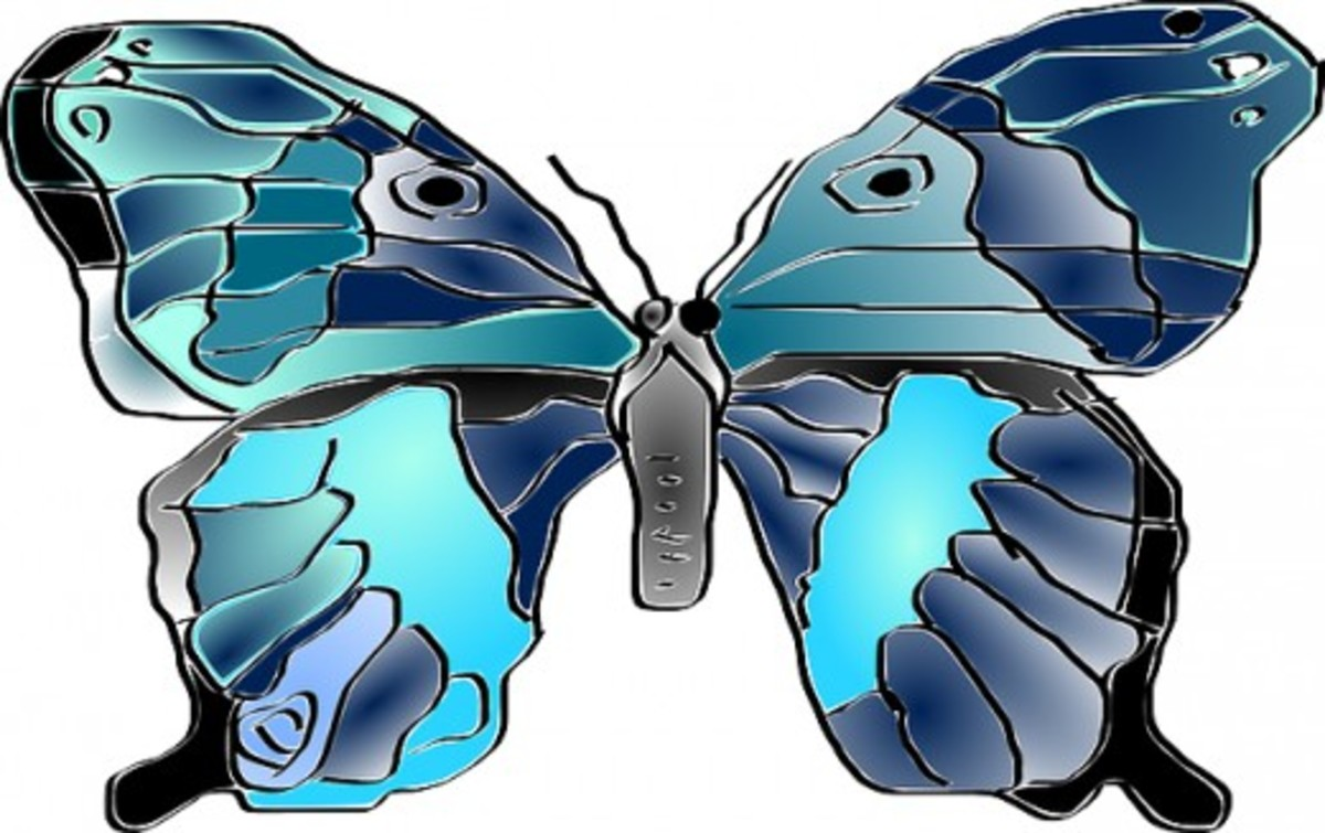 Turquoise and Teal Butterfly