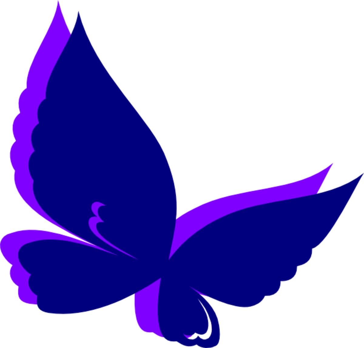 Purple and Indigo Butterfly Wings