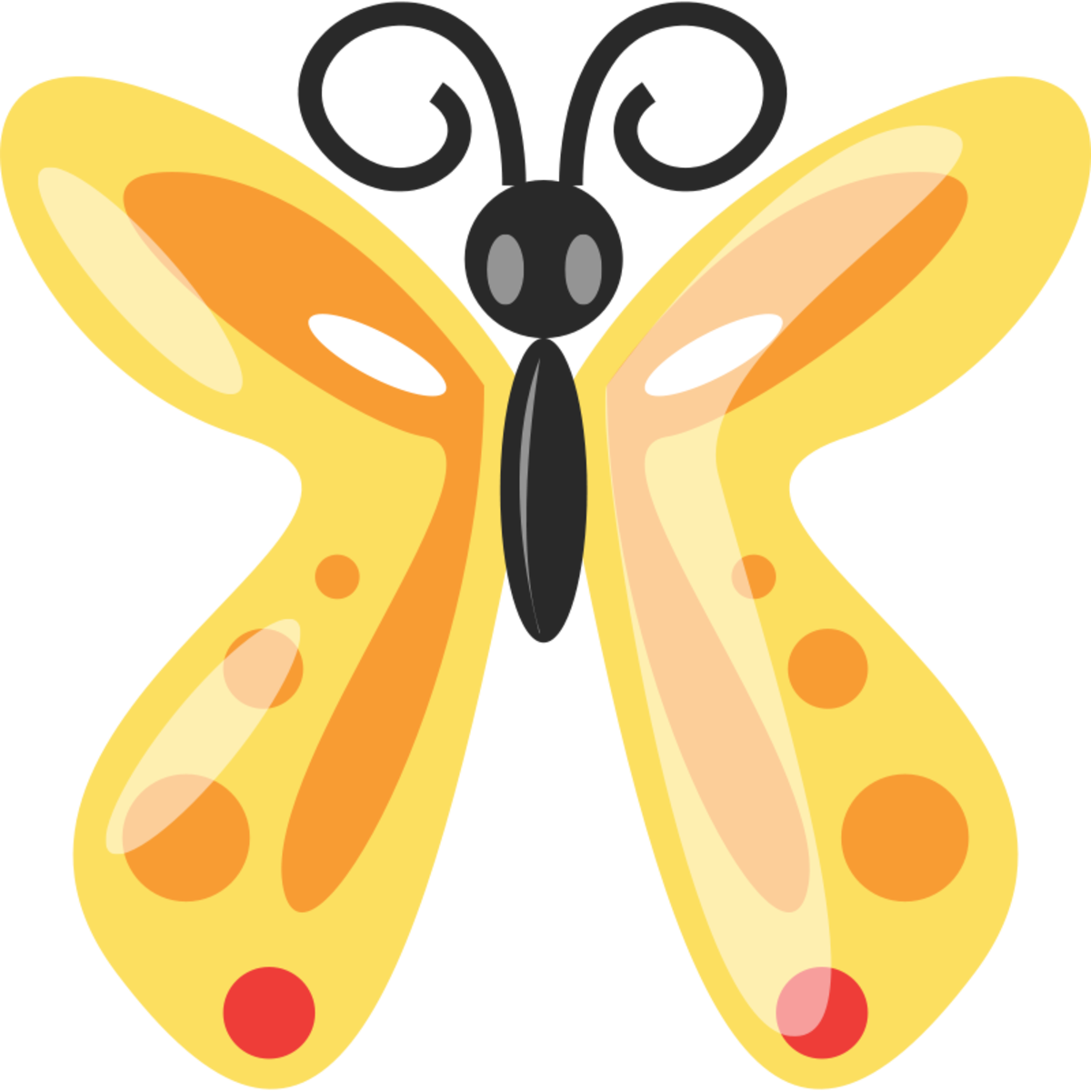 Orange, Gold and Black Butterfly