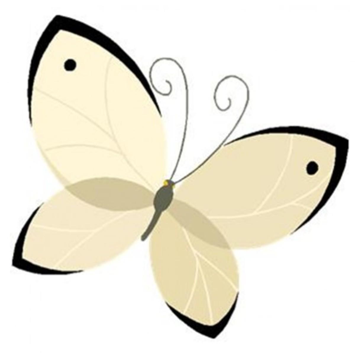 Beige Butterfly