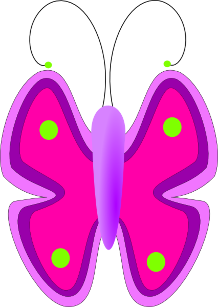 Big Pink and Purple Butterfly with Green Dots