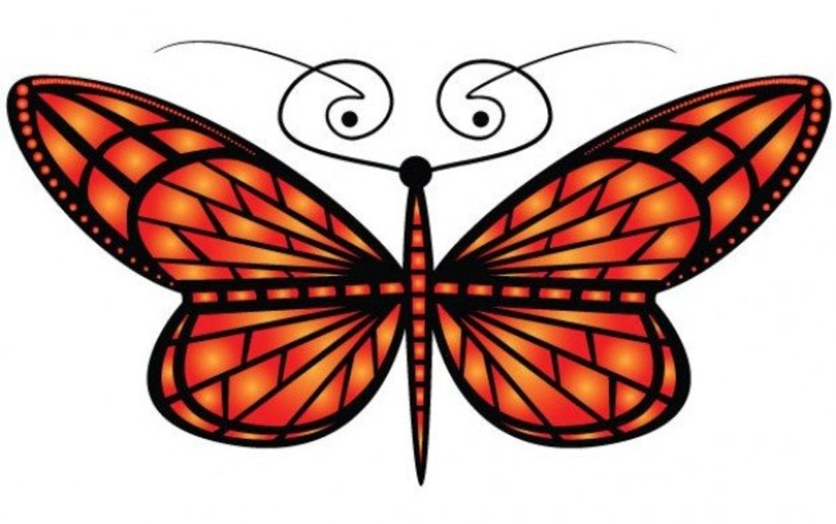 Image of Orange Butterfly with Curling Antennae