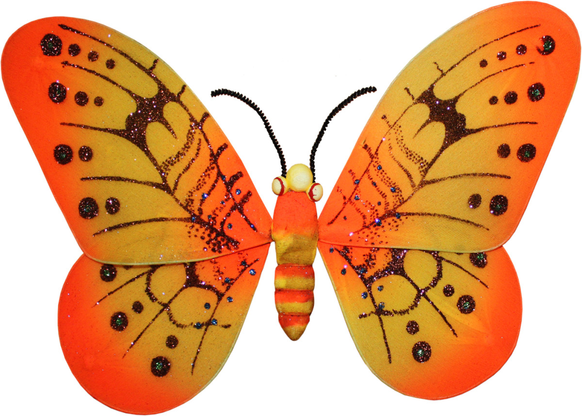Orange and Tan Butterfly