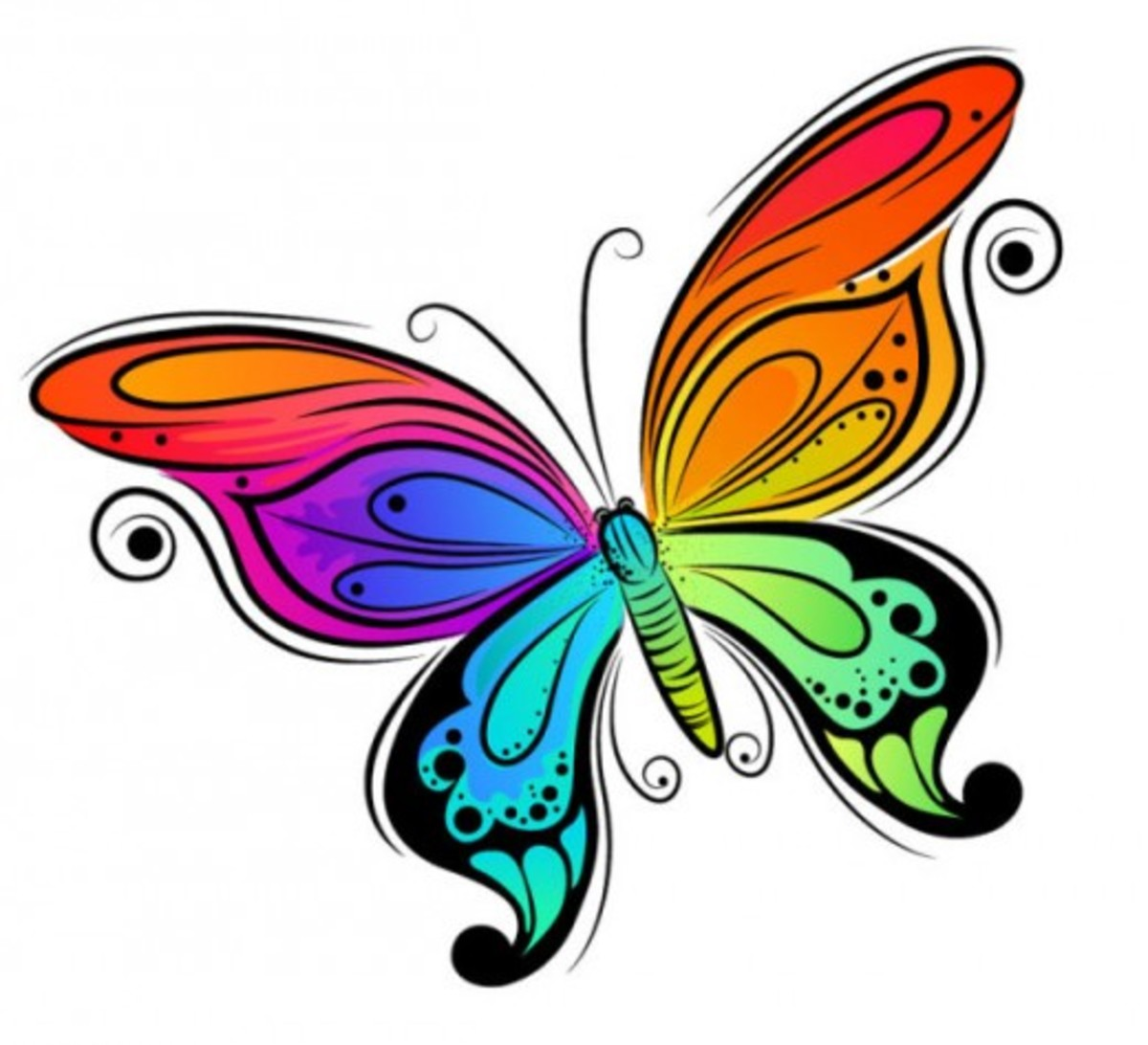 Colorful Butterfly Drawing