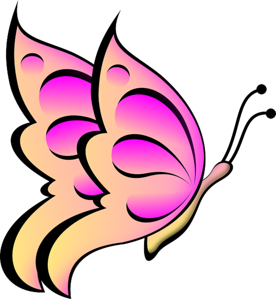 Big Pink Butterfly Art