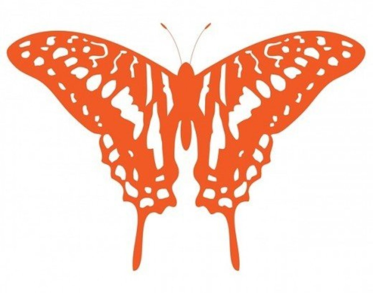 Orange Butterfly Drawing