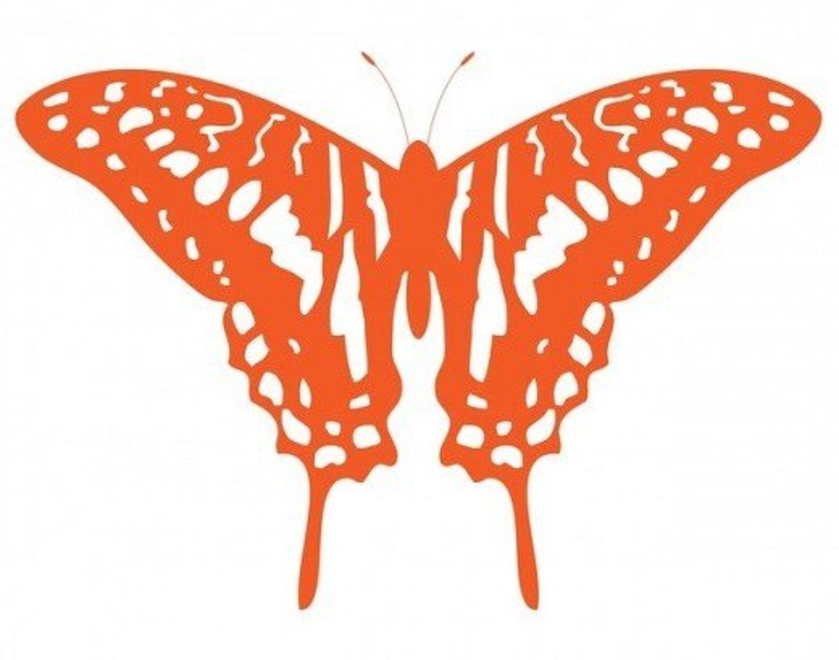 Orange Butterfly Drawing