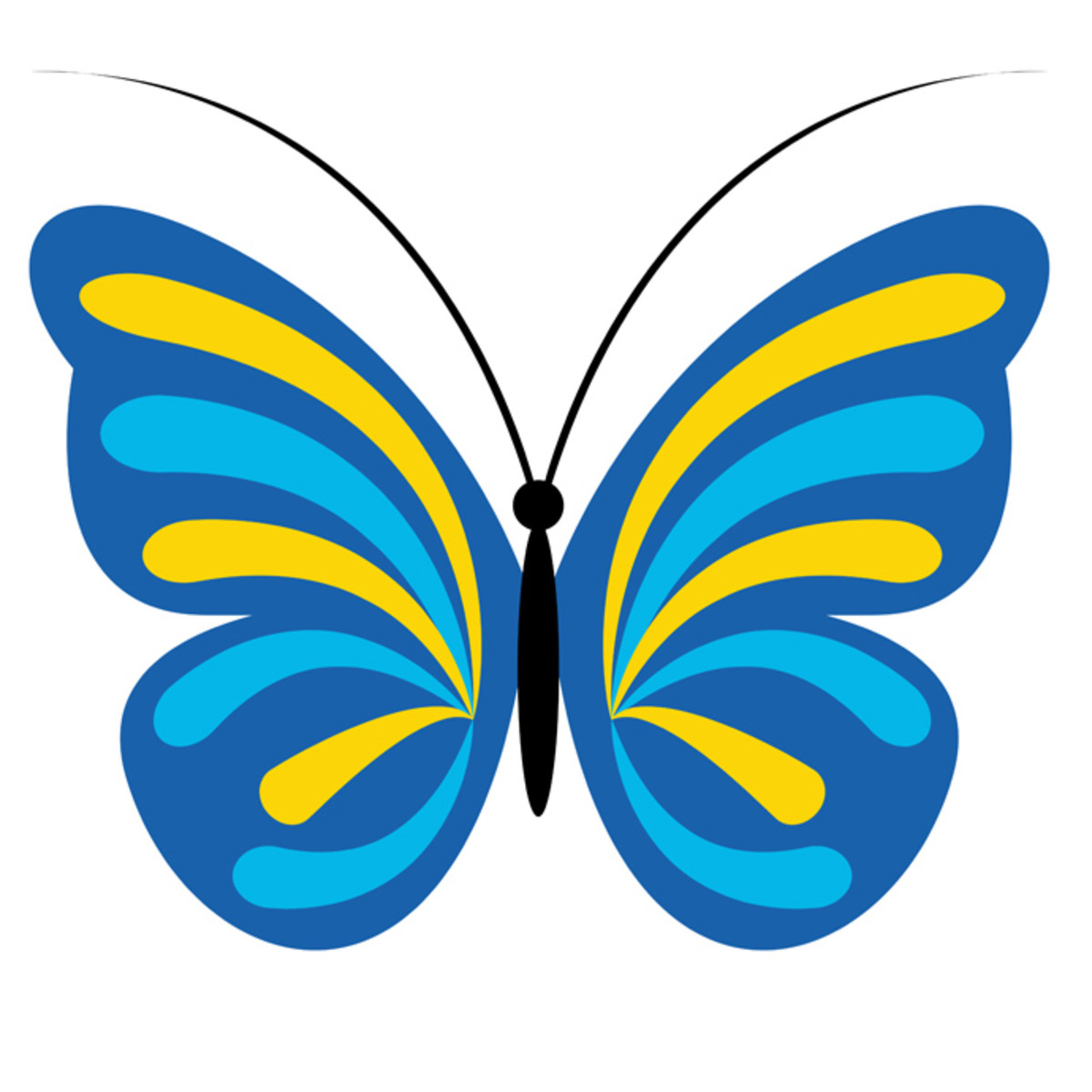 Turquoise and Yellow Butterfly