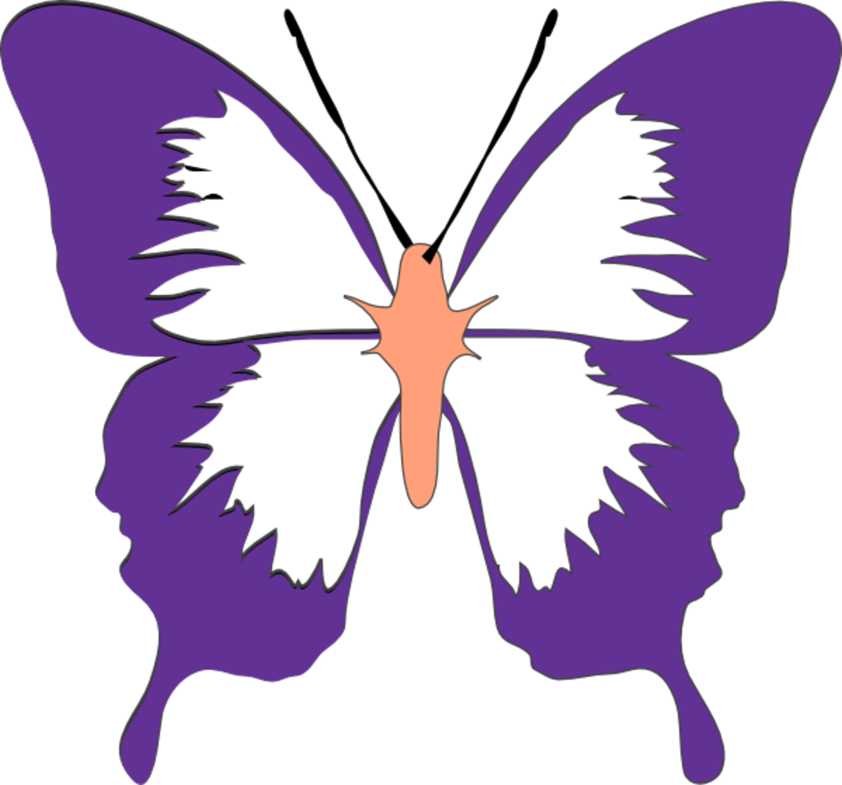 Purple and Peach Butterfly Drawing