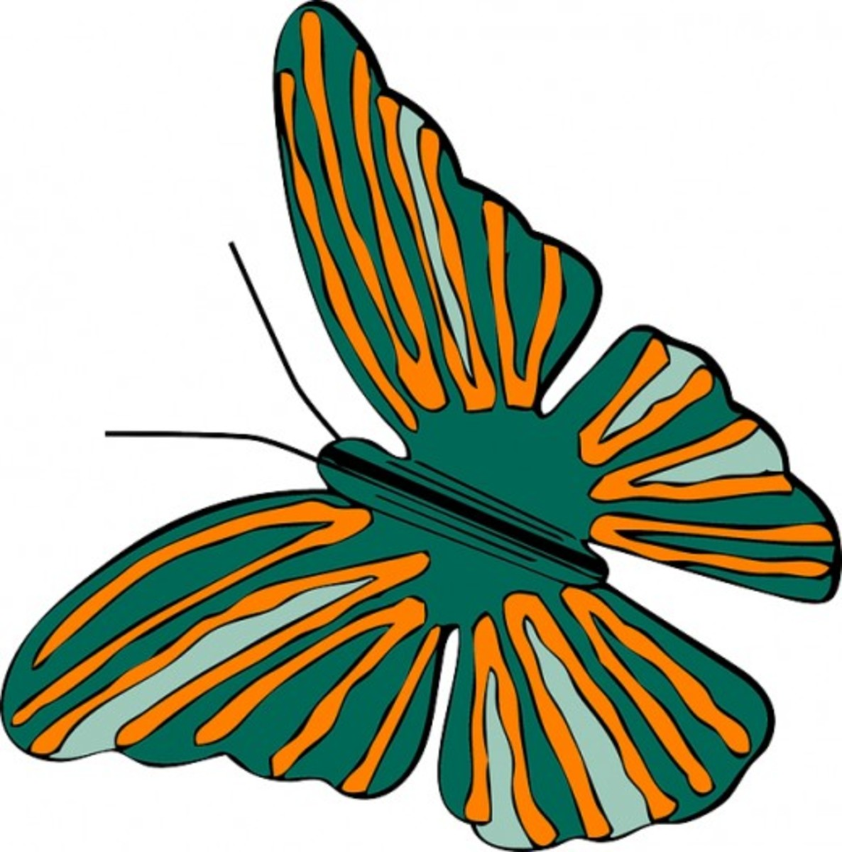Orange and Green Butterfly