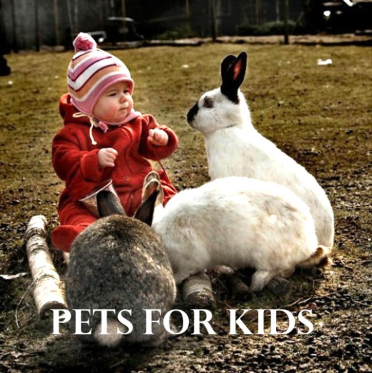 11 Cutest Pets For Children