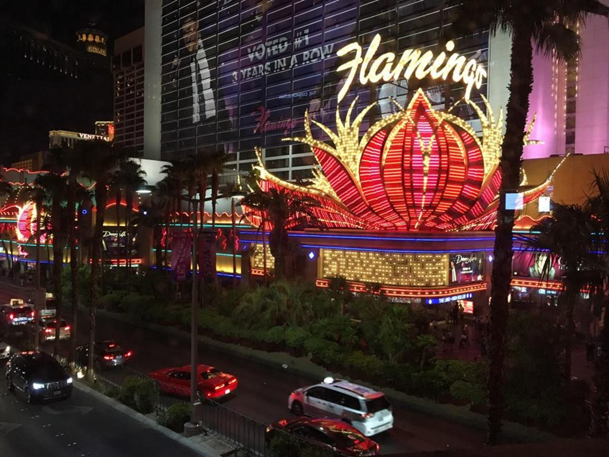An Honest Review of The Flamingo in Las Vegas