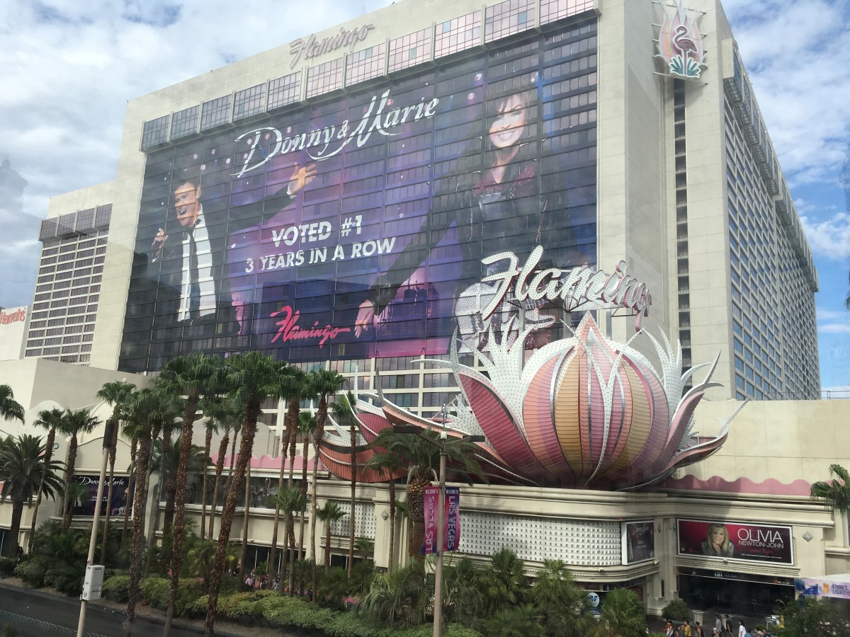an-honest-review-of-the-flamingo-in-las-vegas