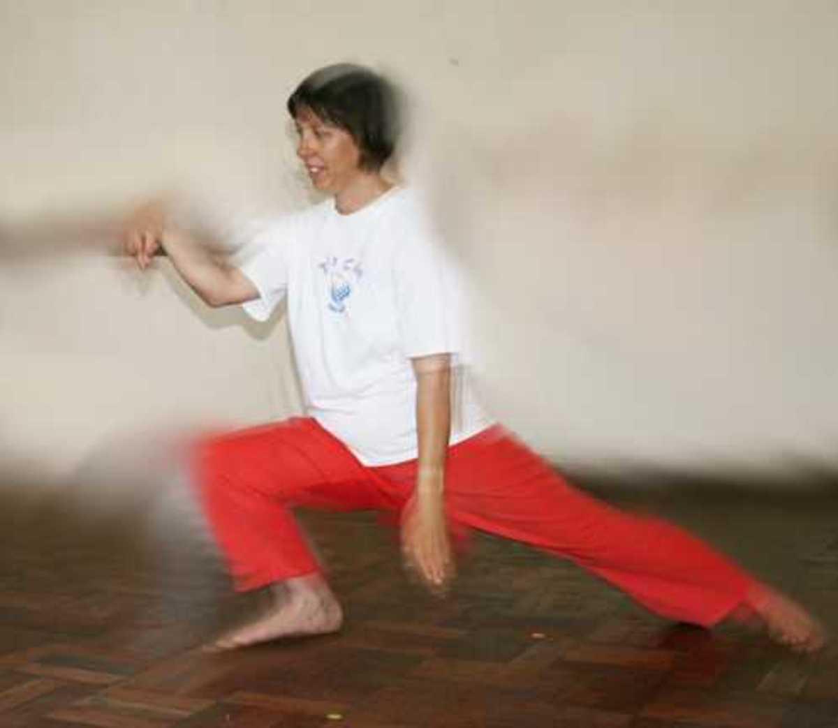 Tai Chi Chuan - Snake Creeps Down
