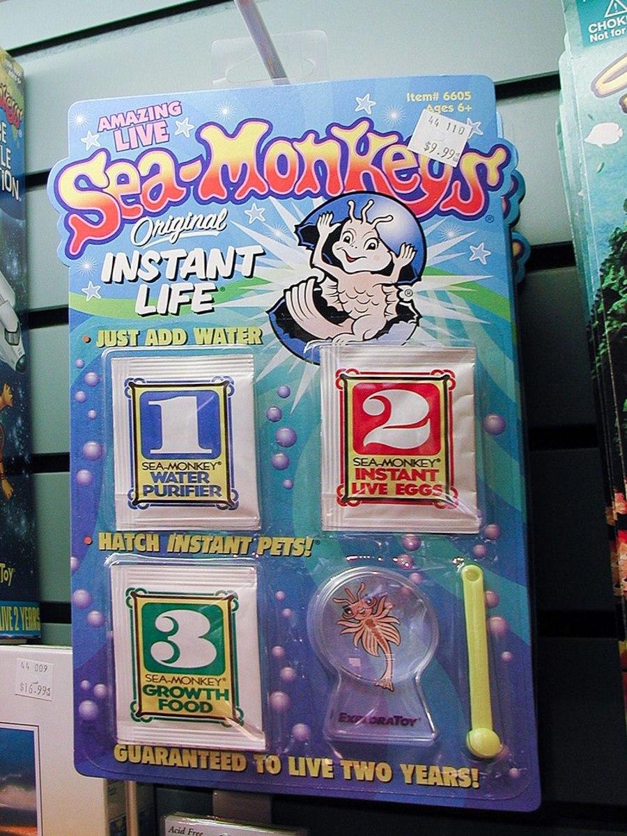 Sea Monkeys = Brine Shrimp