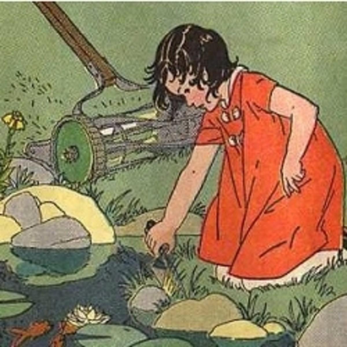 Frog Pond Observation