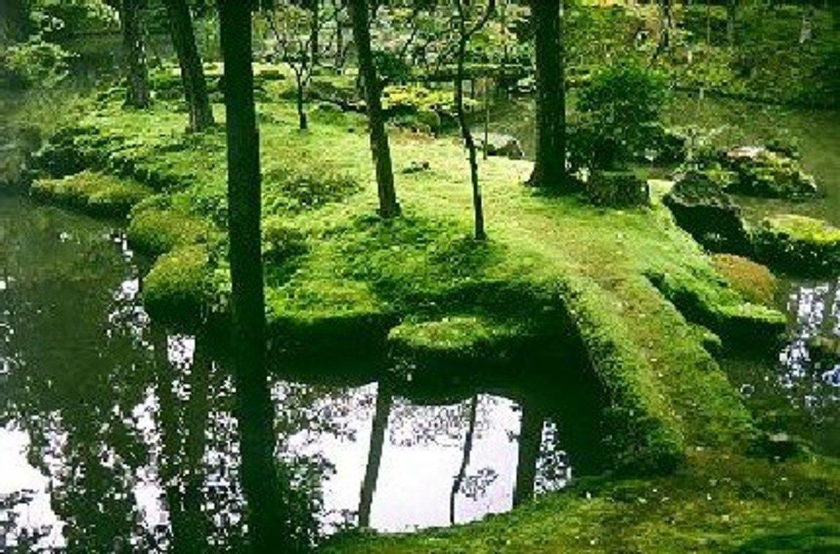 famous moss garden Saiho-ji