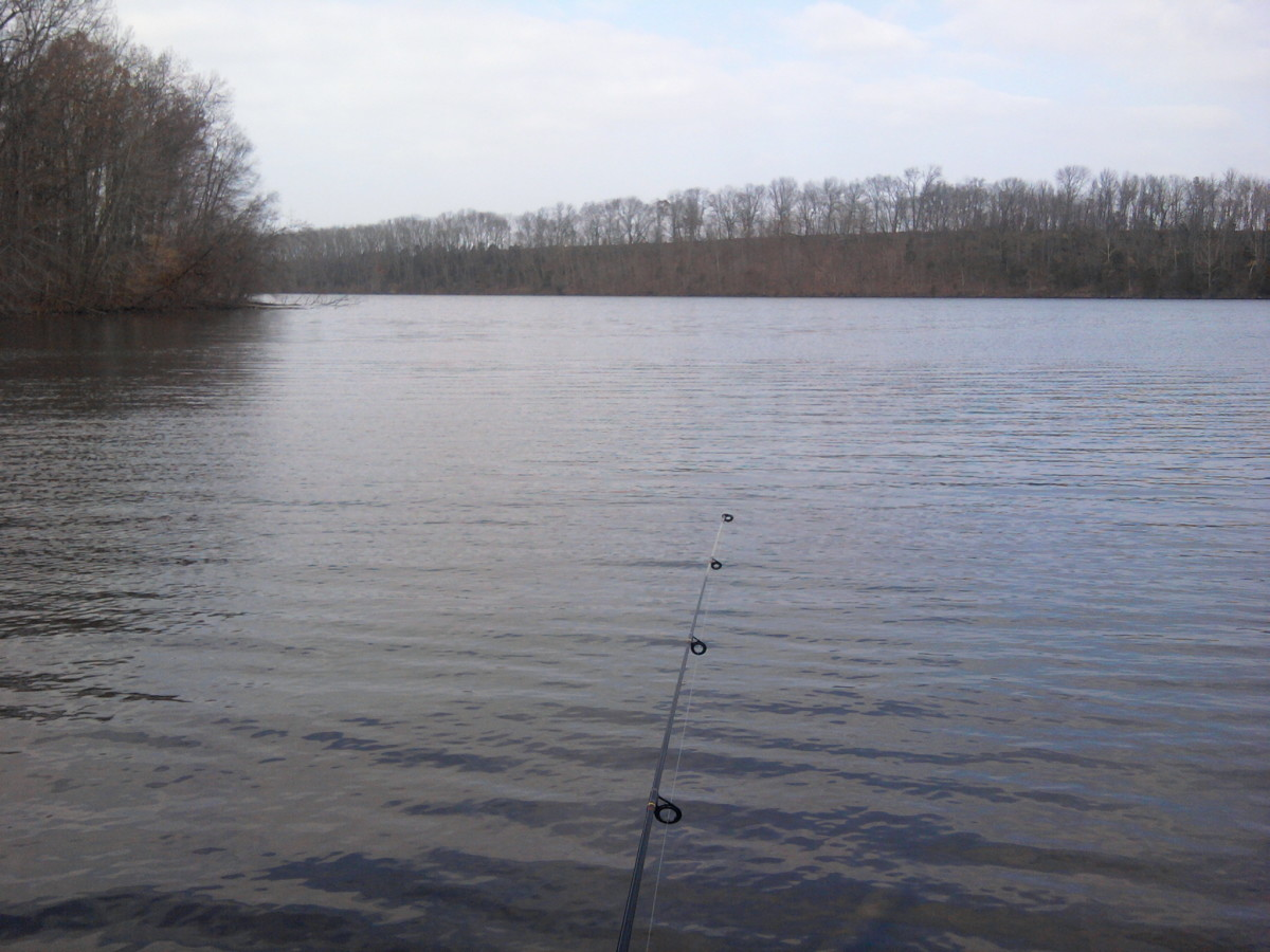 fishing-lakes-in-montgomery-county-where-to-fish-close-to-norristown-pa