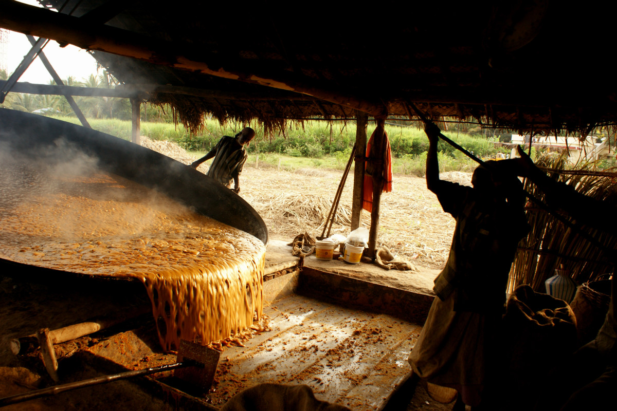 pouring the jaggery for solidifying it