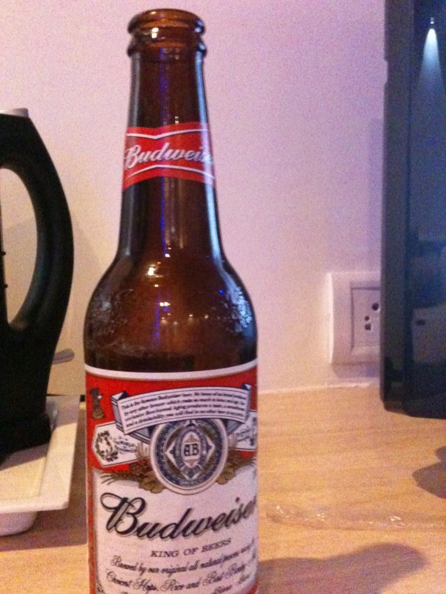 My first beer pint, a Budweiser, at Estrela Do Mar Beach Resort.