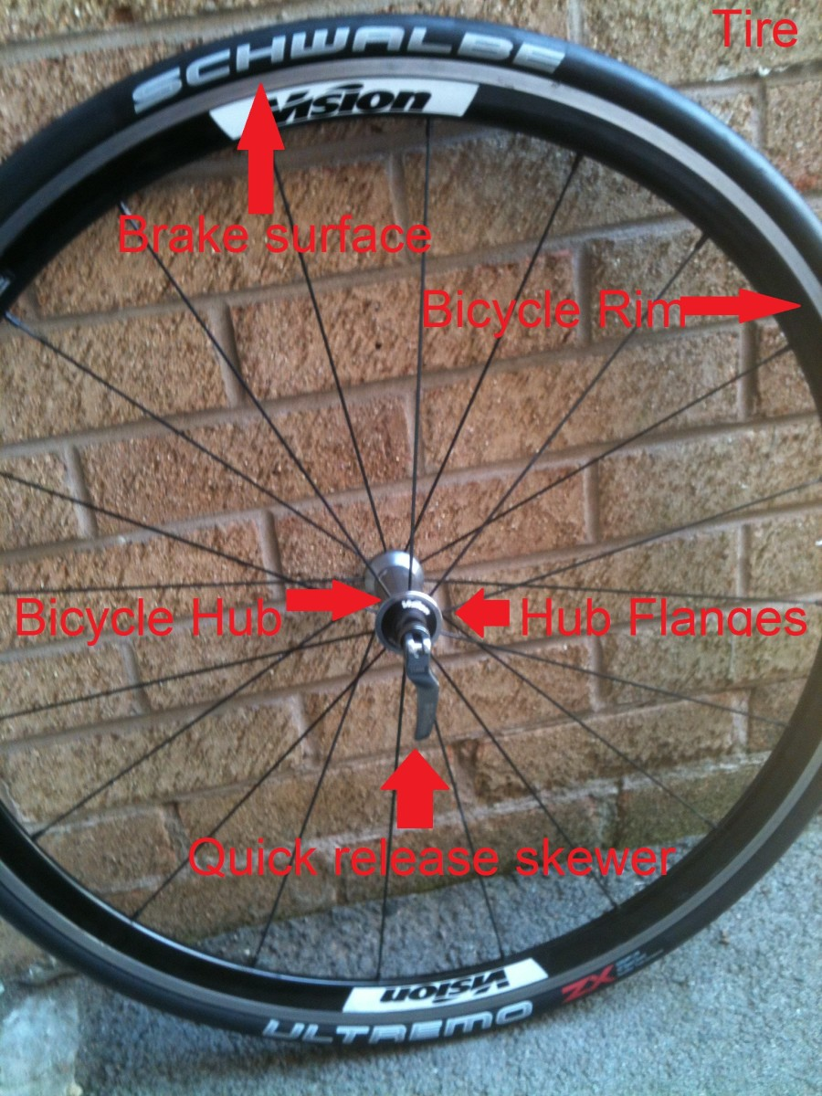 The main componant parts within the anatomy of a bicycle wheel.