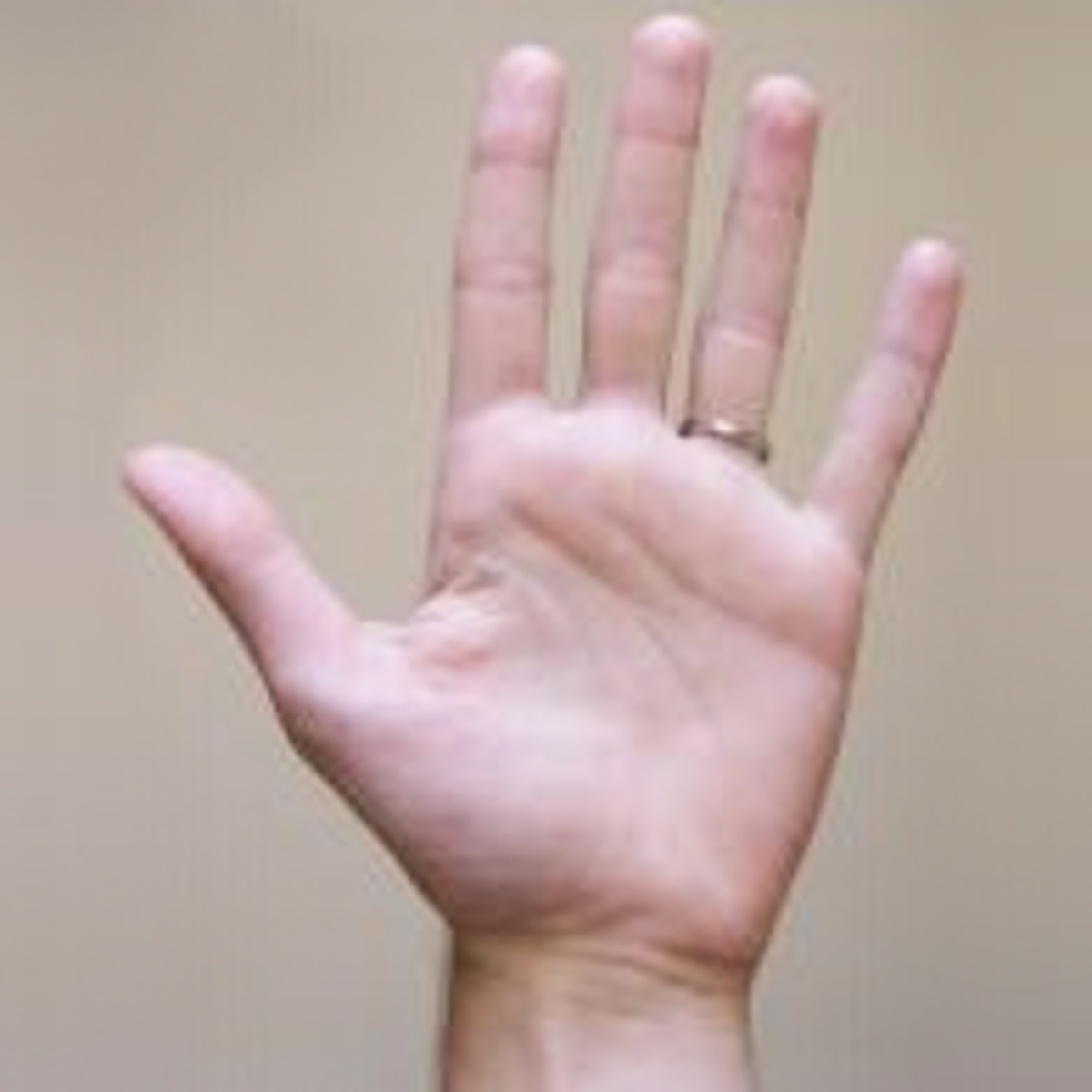 palmistry-for-beginners-what-your-hands-say-about-you