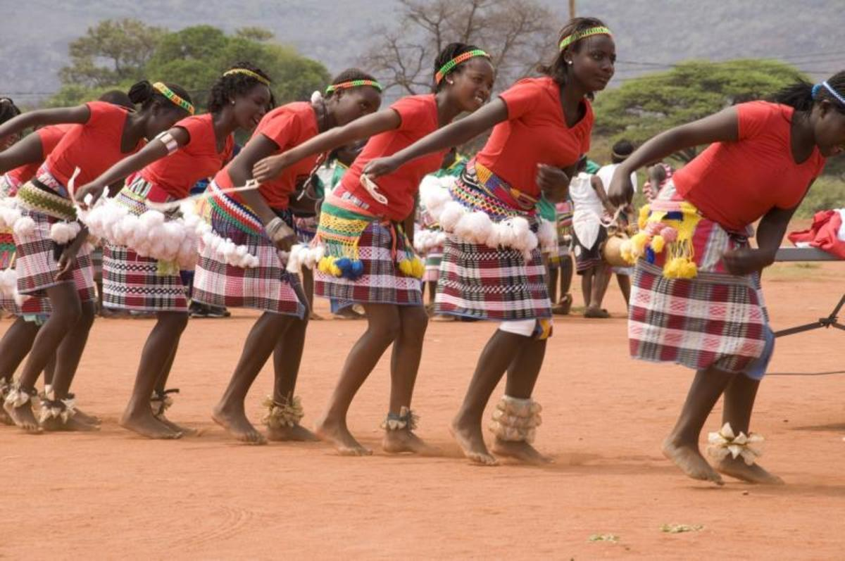 The tshigombela is a female dance usually performed by married women, this is a festive (winter months) dance sometimes played at the same time as the reed flute dance of the men (tshikona). Tshifhasi is similar to tshigombela but performed by young