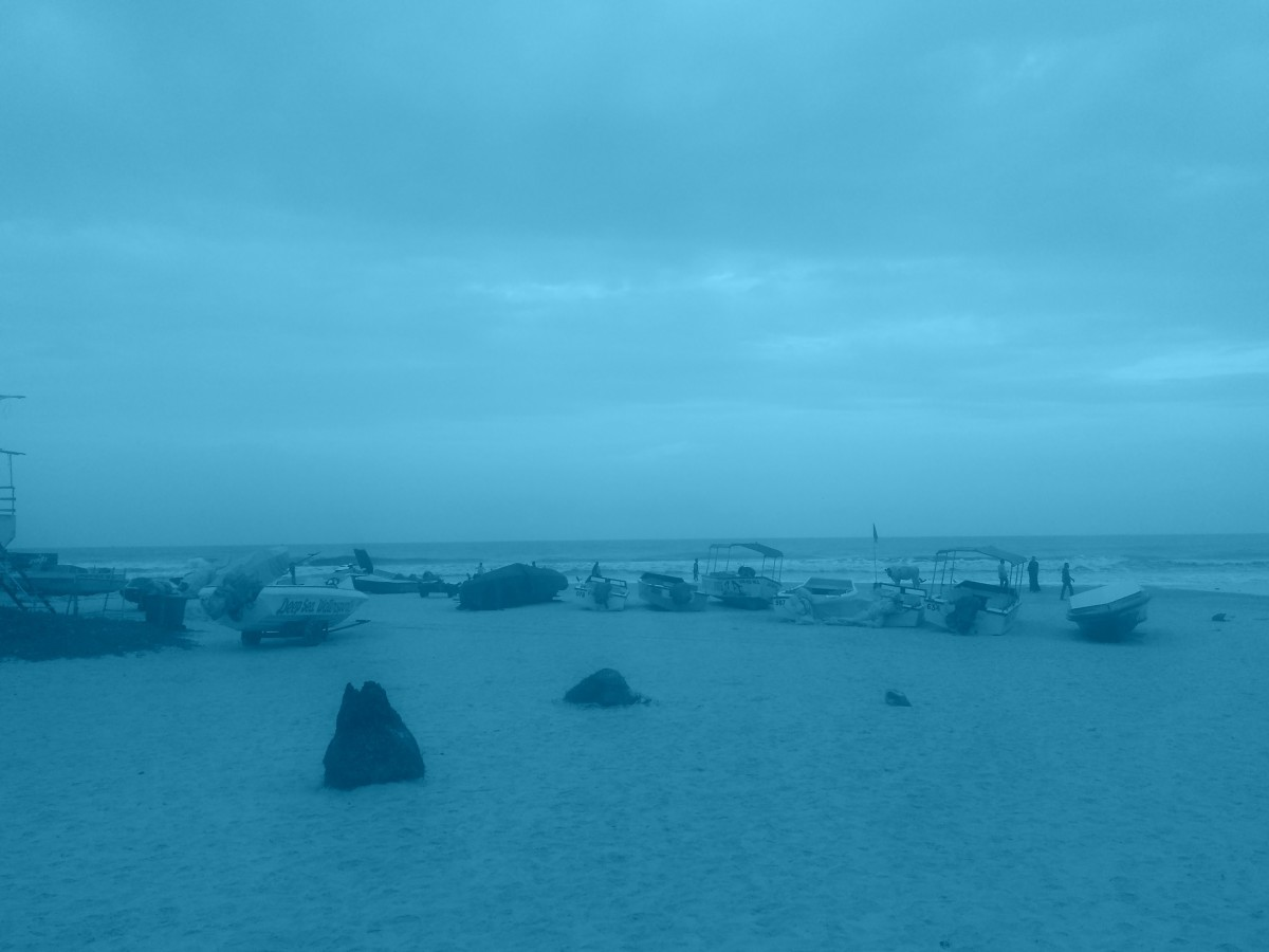 An impressive view of the Colva Beach