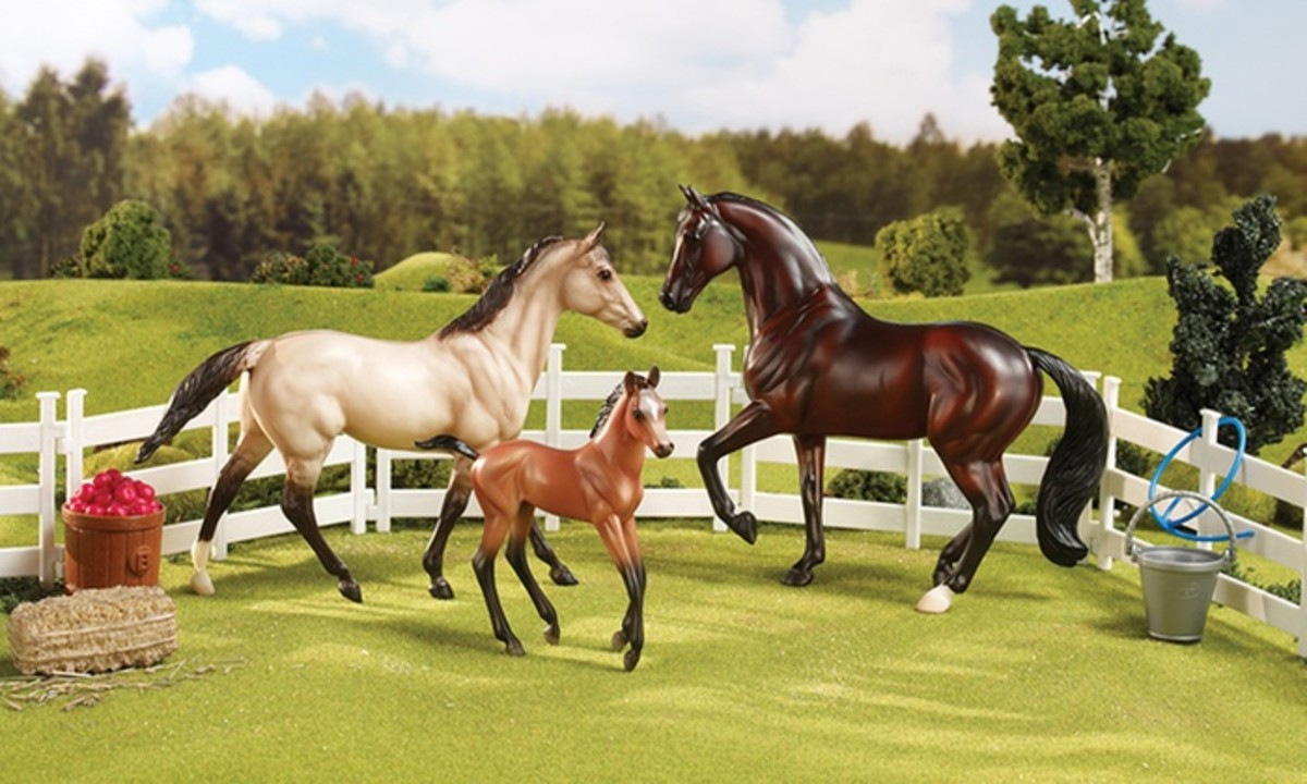 Breyer horses are essential to horse crazy life. As is making sure they are properly,housed,schooled and fed.