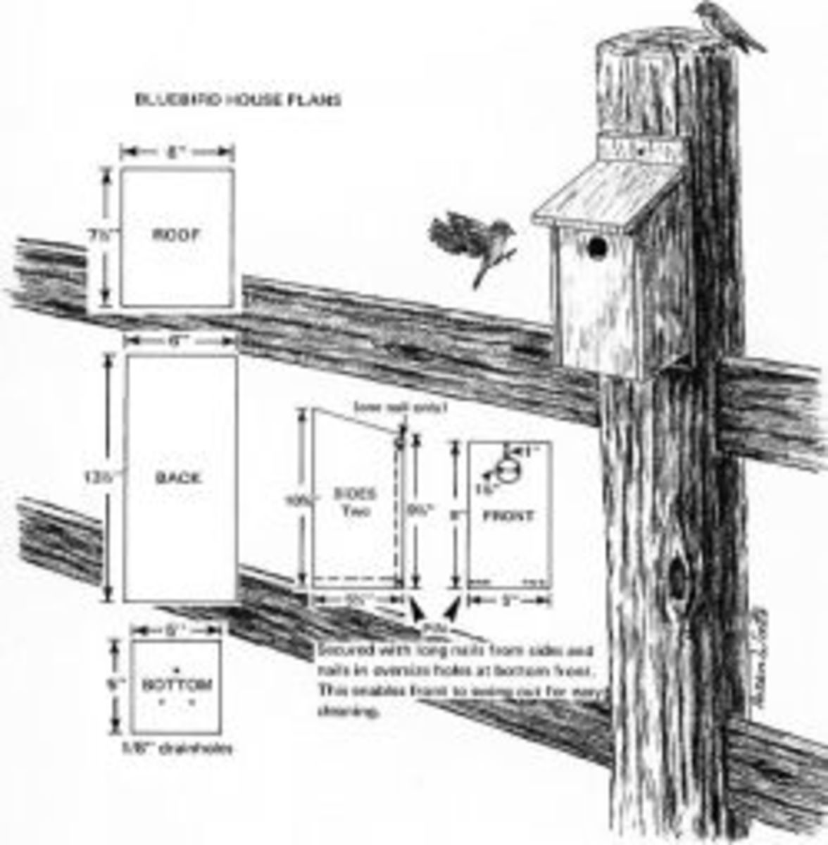 How to Build a Bluebird House