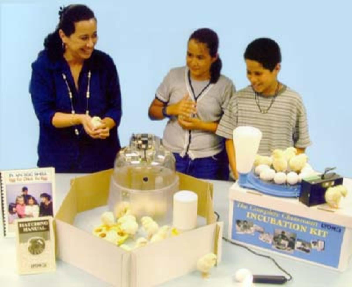 Classroom Incubation Kit