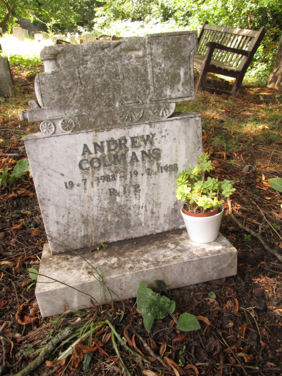 ... And hardly drawn breath - maybe didn't even do that - a week later in the same month Andrew Colmans is but a name in an overgrown grave out of sight but not far from the grand-looking entrance