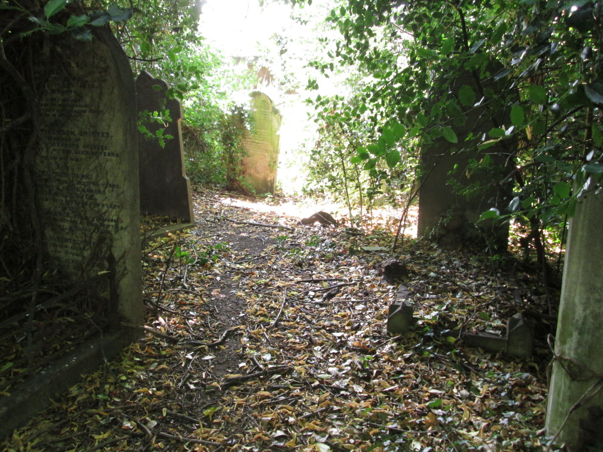 ... Some stones are open to the light where the cemetery backs on to houses in nearby Ridley Road, Forest Gate...