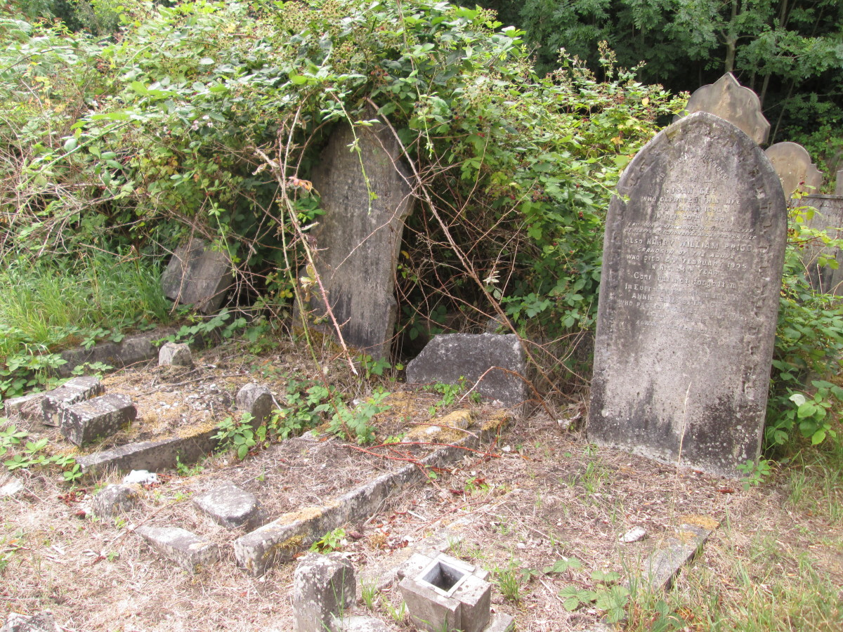 Faint traces of the surrounding grave-top stonework can be made out, ferns and ivy are encroaching. The trees will be next unless the cemetery groundsmen work faster to keep it at bay...