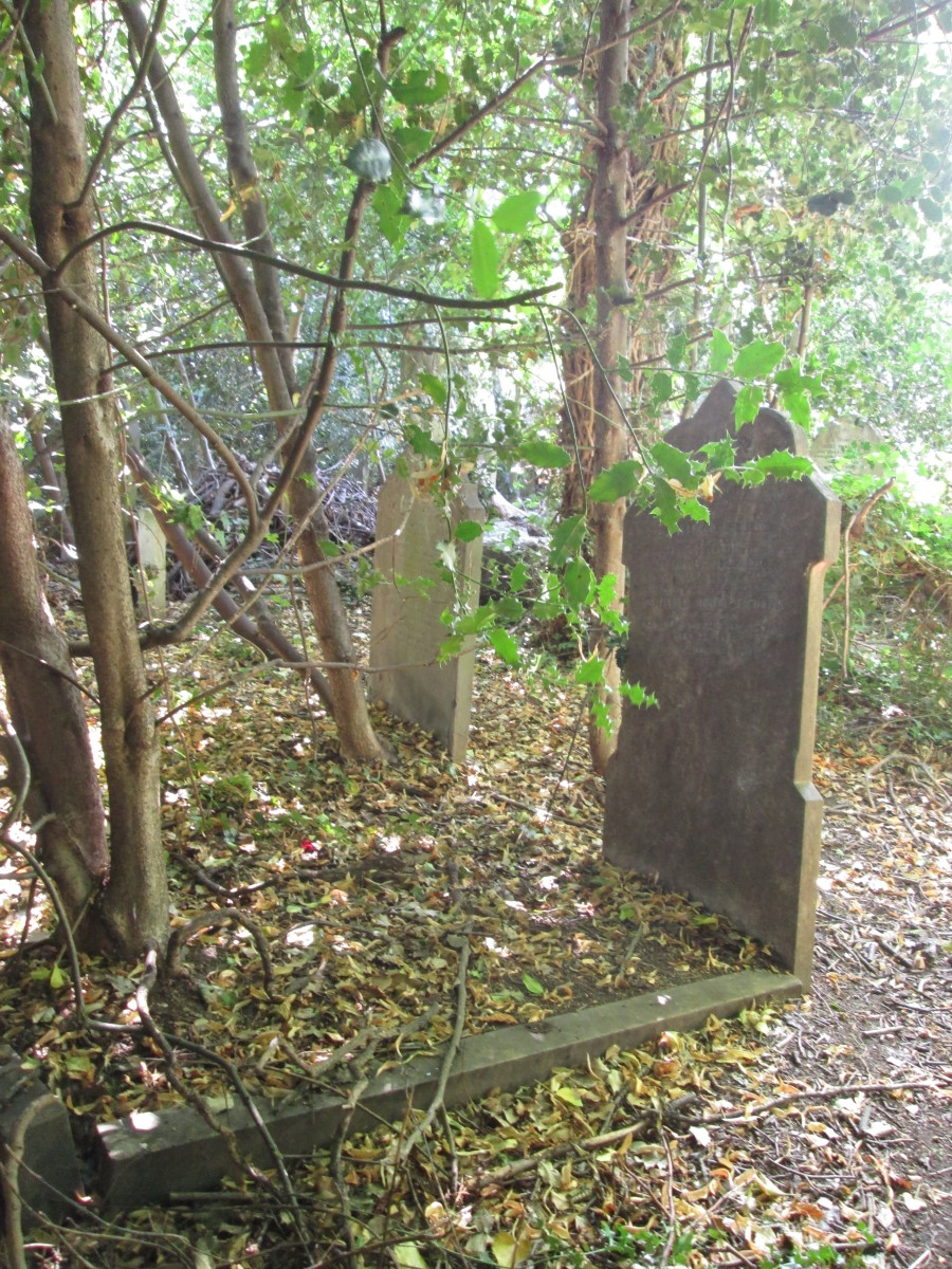 ... Others are spared the tendrils of ivy that have overgrown others, depending on the types of nearby trees. Visitors to their family graves may have abandoned their searches, moved away or emigrated...