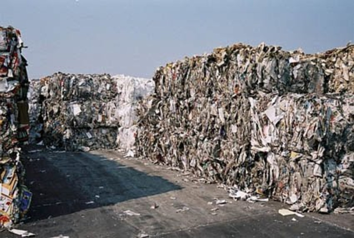 Not all papers are recyclable in the same way: It depends on inks used; it depends on glues used; it depends on how many times you recycle the same paper