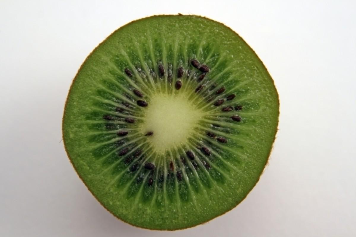 How To Make Homemade Kiwi Lime Sorbet