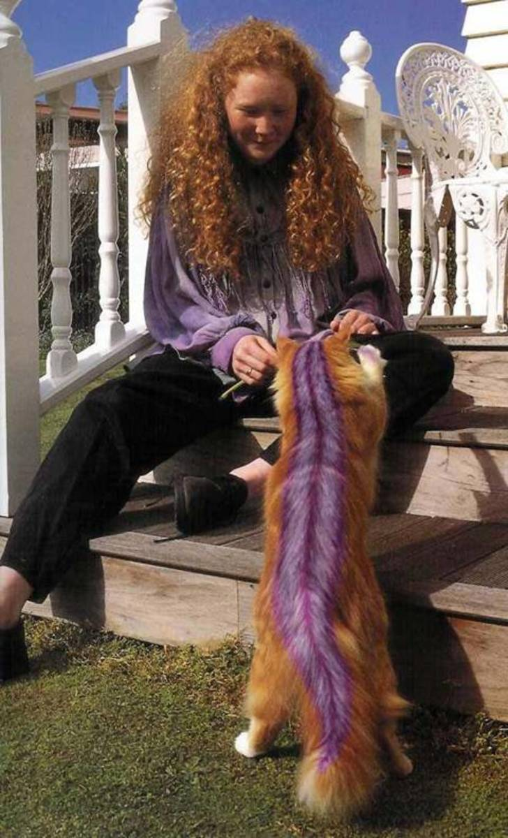 'Why do I want to look like a semi-purple skunk?' Cat