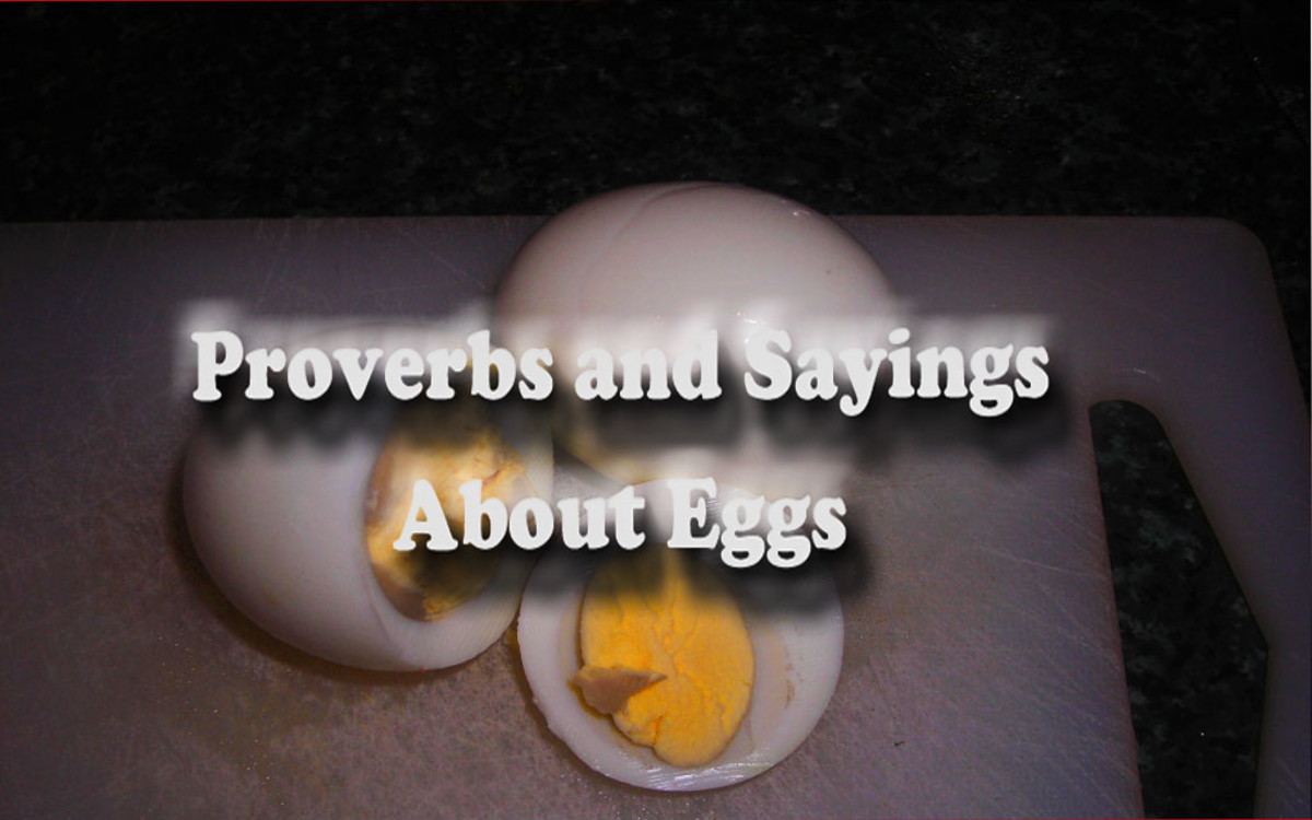 Chicken Egg Quote: Ten English Proverbs And Sayings About Eggs